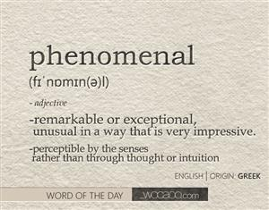 Phenomenal definition